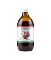 Suc BIO de Goji (LYCIUM BARBARUM) 100% PUR 500ml - HealthNutrition