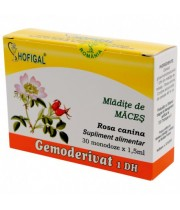 Gemoderivat Mladite Maces, monodoze 30x1,5 ml - Hofigal