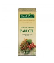 Extract din mladite de paducel MG=D1 50 ml Plantextrakt