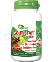 Gout Star 100 tablete - Ayurveda