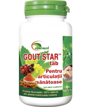 Gout Star 50 tablete - Ayurveda