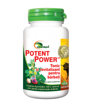 Potent Power 100 tablete - Ayurveda