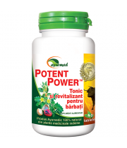 Potent Power 50 tablete - Ayurveda